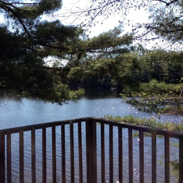 LakeviewCottage_ViewFromDeck